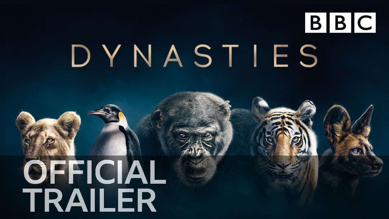 When Will Dynasties Be On Netflix What S On Netflix