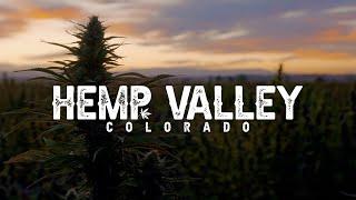 Hemp Valley Colorado | OFFICIAL TRAILER