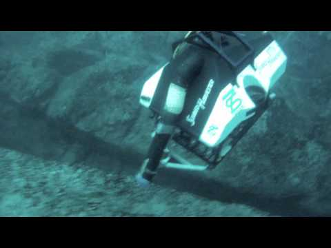 Seafood vacuum cleaner outdoes divers
