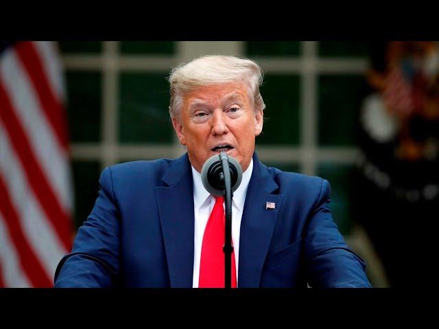 Trump suspends World Health Organisation funding over Chinese coronavirus 'cover-up'