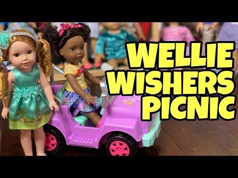 American Girl Wellie Wishers Picnic