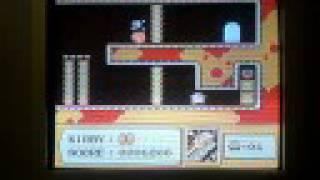 Kirby's Adventure-vegetable Garden Door 2