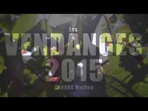 REPORTAGE – Vendanges 2015 « no comment » – quercygourmand.tv