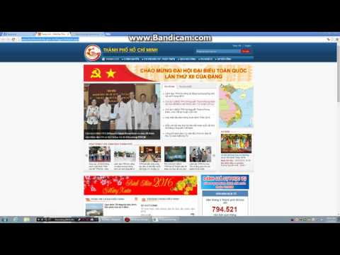 denial-of-service attack in Vietnam