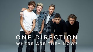 One Direction members! SOLO CAREERS (HARRY STYLES, ZAYN, LOUIS TOMLINSON, NIALL HORAN, LIAM PAYNE)