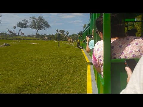 Busch Gardens' Serengeti Express Train
