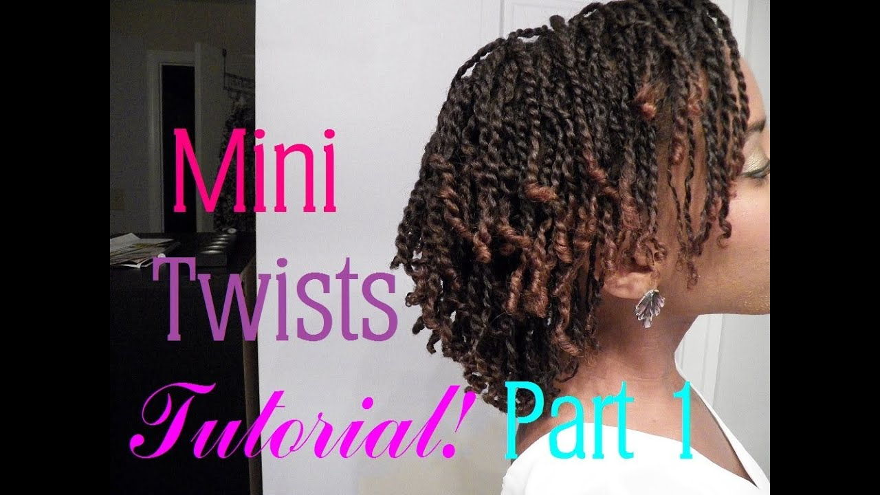 How To Do Mini Twists On Short Medium Length Natural Hair Part 1