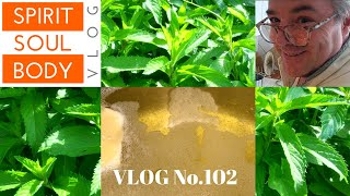 "102. ""MINTY FRESH LIFE"" - VLOG No.102 - 7th June 2020"