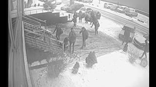 Аварія біля ІнтерСіті 05.01.2017
