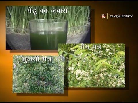 Ayurvedic Benefits of Giloy for Aplastic Anemia | Acharya Balkrishna