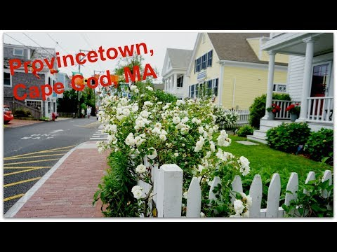 Wacky, whimsical walkabout in Provincetown, Cape Cod MA | Vlog 11