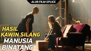 HASIL KAWIN SILANG MANUSIA - BINATANG - MEMILIKI NAFSU   Alur Cerita Film Splice ( 2009 )