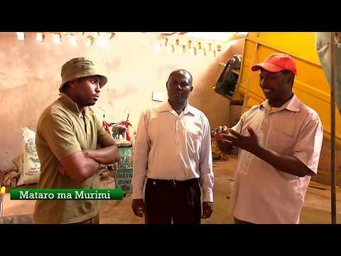 Mataro ma Murimi : proper animal feeding for high production