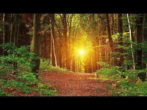 3 Hours Music, No Loops. Inner Peace, Relaxing, Soothing Music