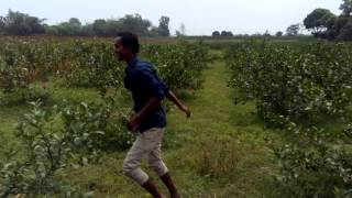 LaLchan Boyati Good Bangla song