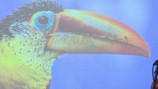 Cleveland Aquarium reveals upgrades See the new species on display