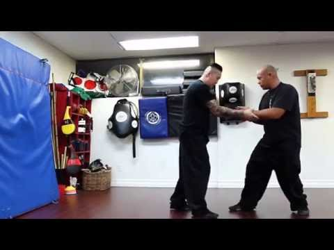 Internal Force Training | Sifu Asiatic
