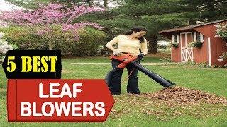 5 Best Leaf Blowers & Leaf Vacuums 2018 | Best Leaf Blowers & Leaf Vacuum Review | Top 5 Leaf Blower