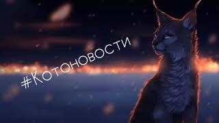 Котоновости || Коты-Воители