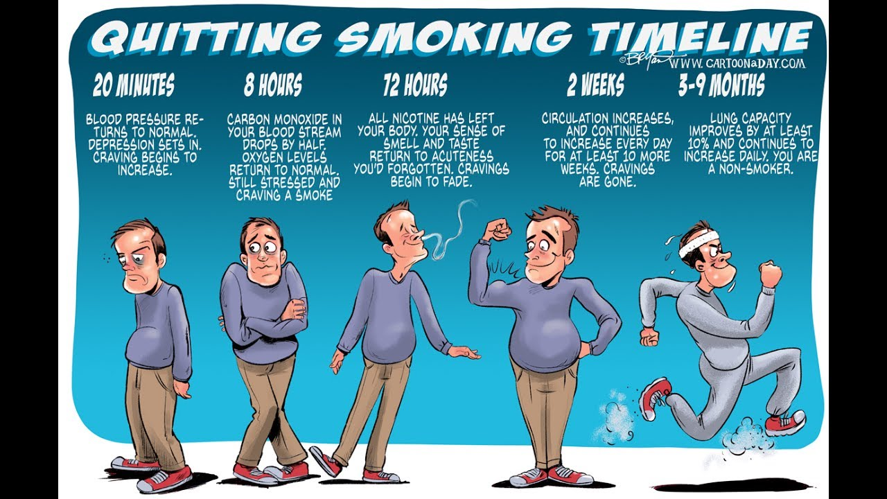 The Effects Of Quitting Smoking Cartoon Cartoon A Day