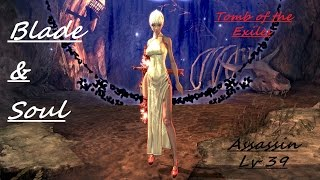 [Blade and Soul] Assassin lv39 -Tomb of the Exiles- on