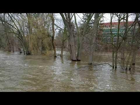 Red Cedar River MSU flood crest