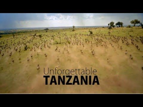 Download MBUGA ZA WANYAMA: UNFORGETTABLE TANZANIA