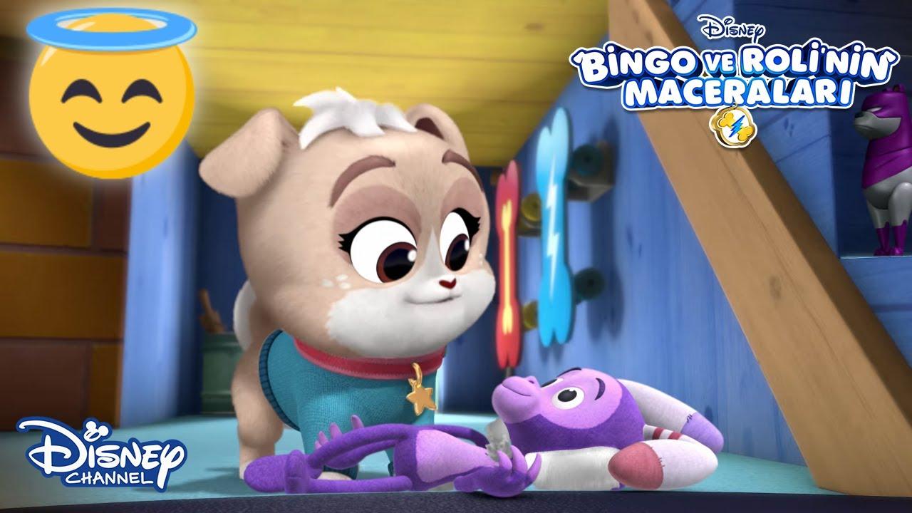 Bebek Köpekler🤗🍼👶 | Bingo ve Roli'nin Maceraları | Disney Channel Türkiye