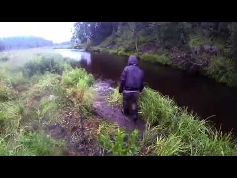 Salmon Halibut Fish Fishing On The Ninilchik River (All Season Campground Online Booking)