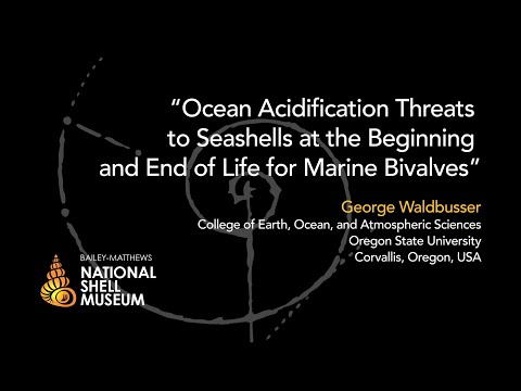 Mollusks in Peril — Ocean Acidification Threats to Seashells