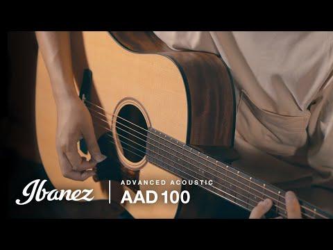 Ibanez AAD100-OPN Acoustic Guitar