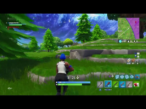 Fortnite with autistic people