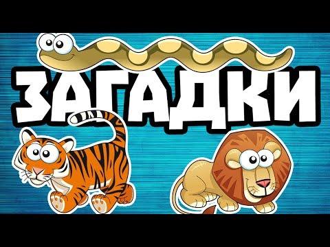 Детские загадки. Интересные факты о животных вместе с веселым Котом Джемом! 🐈