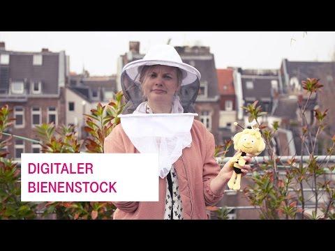 Social Media Post: Der digitale Bienenstock und das Internet der Dinge - Netzgeschichten