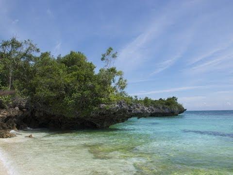 Dive   Zanzibar   Pemba Island