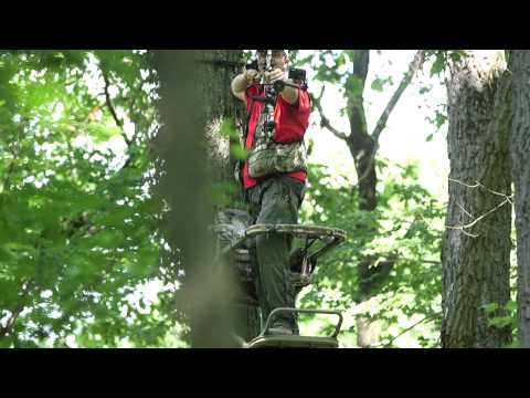 How to shoot at a deer from a tree stand