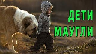 ДЕТИ МАУГЛИ ИЛИ ДЕТИ КОТОРЫХ ВОСПИТАЛИ ЖИВОТНЫЕ(Дети Маугли или дети которых воспитали животные Этих детей воспитали животные и поэтому их называют