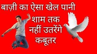 बाज़ी का ऐसा खेल पानी शाम तक नहीं उतरेंगे कबूतर || Kabootar Udane ka khel pani || Bazi Wala Nuska