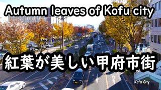 【甲信越地方の動画】 Koshinetsu region
