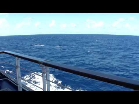 HD RELAXTION Ocean Cruise Ship on sea Kreuzfahrtschiff Reling relax auf See Transatlantik