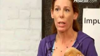 House Training Your Puppyhow To Potty Train A Dog Indoors Potty Training In 3 Days Video