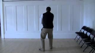 Wu Style Tai Chi Short Form -- 3 Views