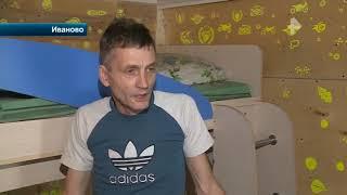 В Иванове прокуратура проводит проверку после того, как стая бездомных собак едва не загрызла мальчи