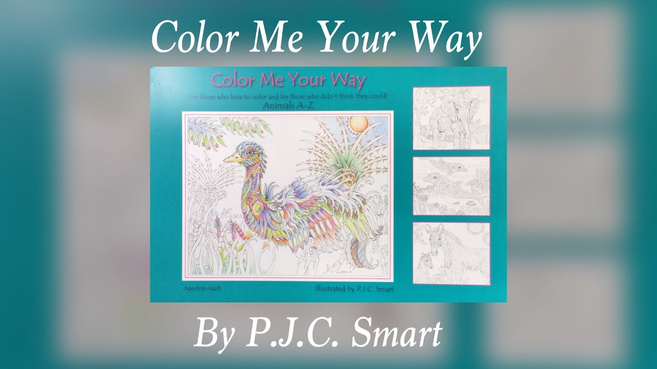 Color Me Your Way By Pjc Smart Flip Through