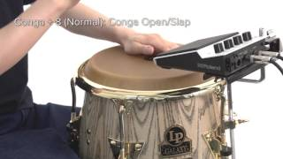 """Performance Examples (SPD::ONE PERCUSSION)"" Roland SPD::ONE #15"