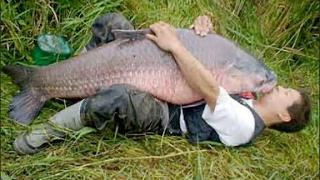 Faze Amuzante la Pescuit - Te prapadesti de ras ! Cei mai prosti pescari :))
