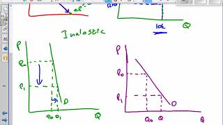 Free-Ed Price Elasticity on Graphs