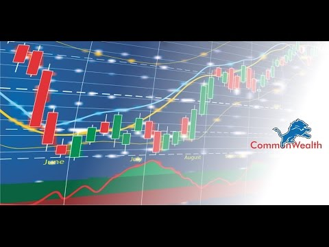 common Wealth trust Investment steps