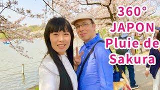 JAPON 360° UENO SAKURA HANAMI sous une pluie de pétales de cerisiers, parc TOKYO Vidéo sphérique