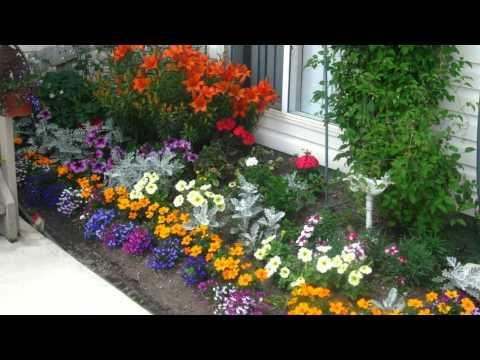 Подари себе хорошее настроение - посади цветы у подъезда.